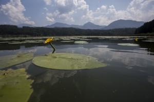 meer in Karinthië