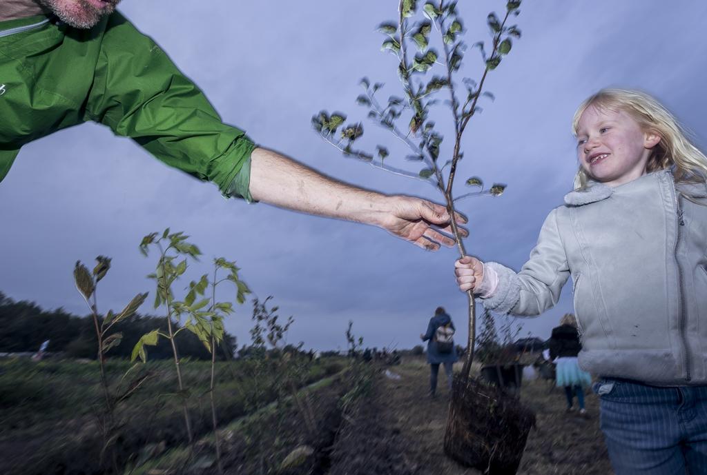 Elin van der Hoek helpt net als veel andere vrijwilligers mee om bomen aan te planten op het natuurgoed Ziedewij in Barendrecht.